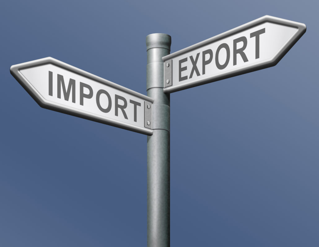 Services Import Export License